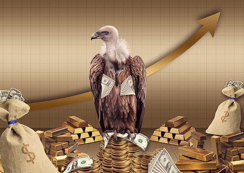 Vulture, Gold, Money, Coins, Business, Money Bags