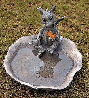 Dragons With Water Bowl, Mirroring, Butterfly, Wing