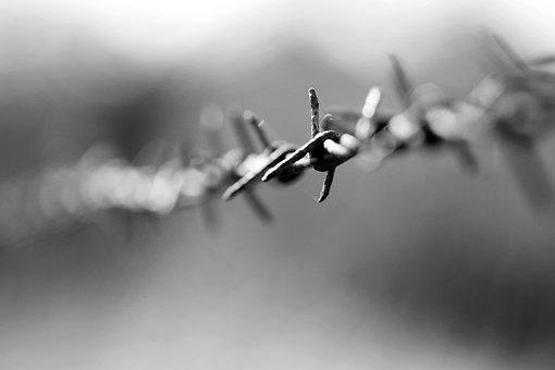 Barbed Wire, Metal, Fe, Fence, Wire, Security, Barrier