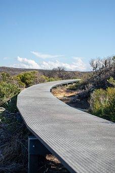 Path, Metal, Bush, Walk, Scenic, Steel, Bridge