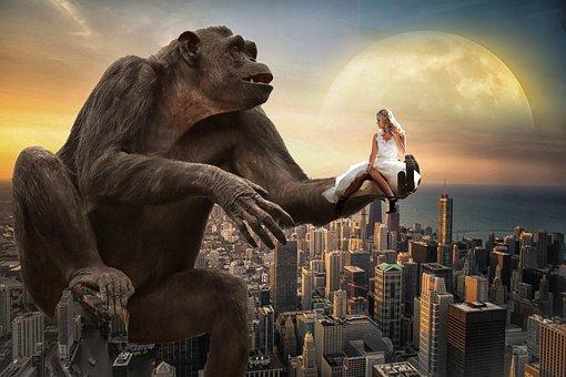 Fantasy, Monkey, Mrs White, New York, City, Moon, Sky