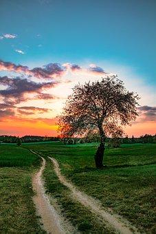 Landscape, Sunset, West, Dirt Road, Way, Summer, Clouds