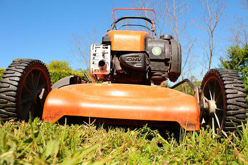 Mower, Nature, Green, Grass, Gardening, Lawn, Garden