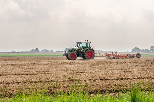 Tractor, Agriculture, Fields, Labour, Field, Machine