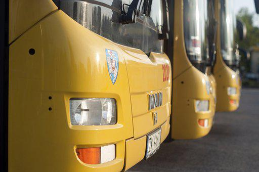 Bus, City, Urban, Traffic, Road, Street, Transport