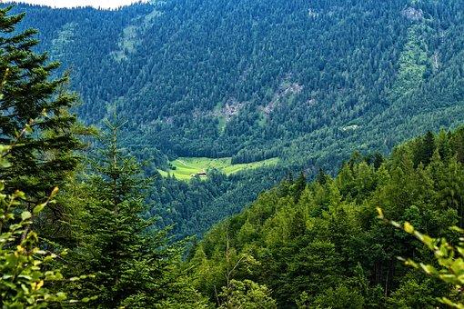 Hagertal, Kössen, Tyrol, Austria, Nature, Alpine