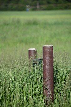 Field, Post, Grassland, Green, Brown, Pole, Countryside