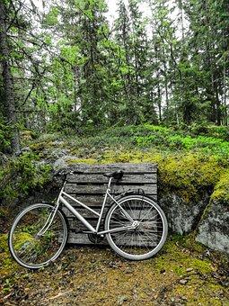 Bike, Forest, Green, Metal, Trip, Green Bike