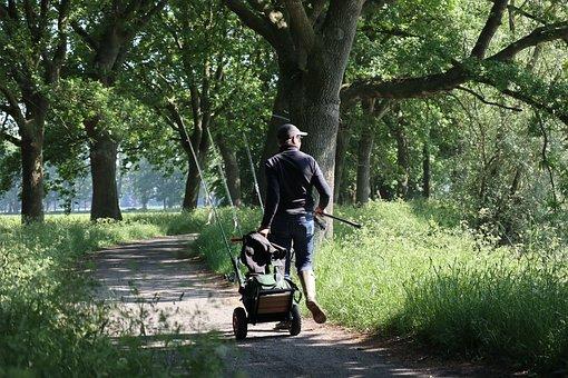 Fisherman, Path, Landscape, Nature, Trees, Green