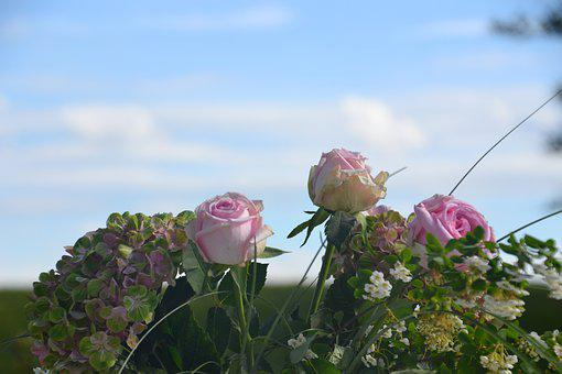 Flowers, Roses, Bouquet, Wedding, Pink, Sky, Blue