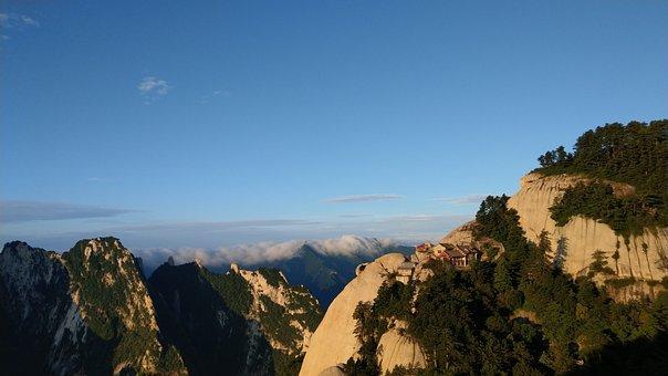 Pinus Armandii, South Peak, Early In The Morning