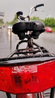 Bicycle, Reed, Rain, Street