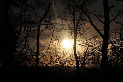 Landscape, Sun, Sunset, Summer, Field, Atmosphere