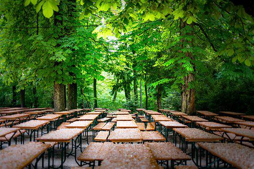 Park, Benches, Dining Tables, Forest, Trees