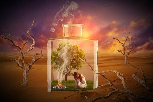 Glass, Bottle, Desert, Woman, Human, Trees, Drought