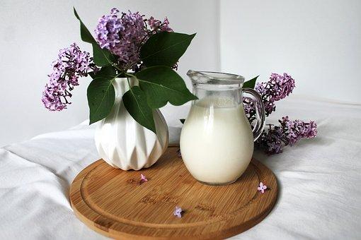 Still Life, Spring, Lilac, Milk, Bouquet, Vase, Flowers