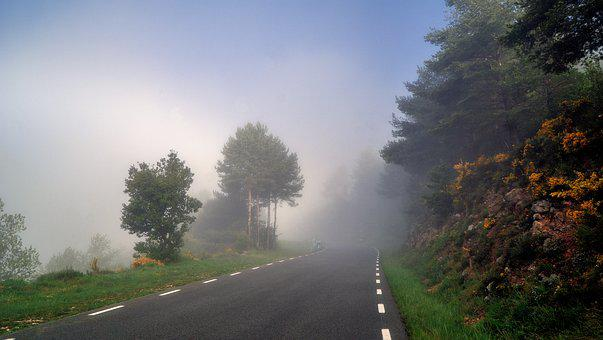 Fog, Meteorology, Climate, Nature, Environment, Scenic
