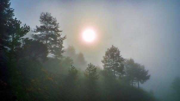 Fog, Meteorology, Climate, Landscape, Nature