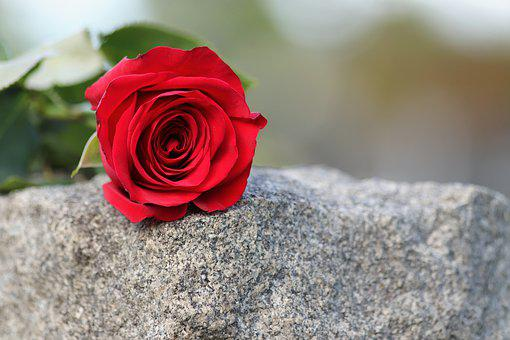 Single Red Rose, Love Symbol, Grey Marble, Gravestone