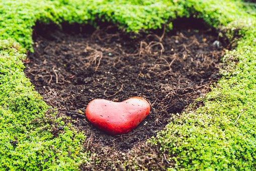Heart, Garden, Spring, Nature, Love, Pattern, Red
