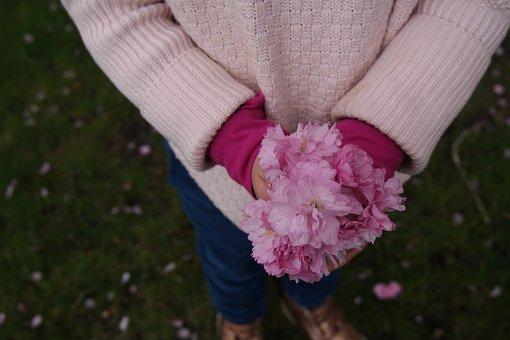 Cherry Blossom, Spring, Flowers, Blossom, Cherry, Love