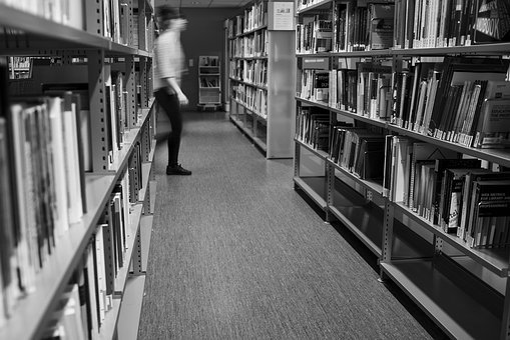 Library, Study, University, Book, Books, Bookshelf