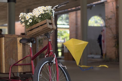 Kite, Bike, Flower Flowers, Flores, Plant, Nature