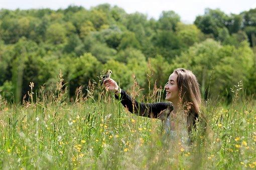 Bird, Wild, Grass, Gree, Forest, Bio, Animal, Nature
