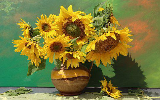 Bouquet, Still Life, Flora, Vase, Flowers, Sunflower