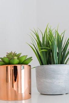 Pot, Copper Pot, Marble Pot, Decoration, Interior