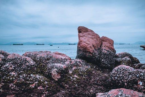 The Scenery, Beach, Rock, Stone, Calm