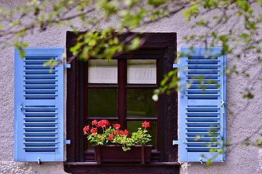 Window, Shutters, Geranium, Flowers, Color, Colorful