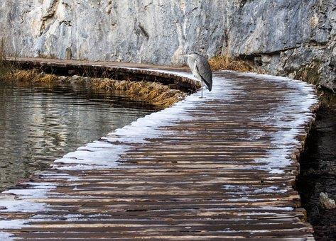 Croatia, Park, Plitwice, Nature, Winter, Waterfall