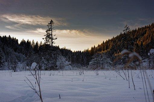 Barmsee, Bavaria, Snow, Winter, Sky, Landscape, Germany