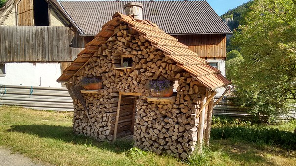 Wood Pile, Logs, Heap, Cup, Heating, Slaughter, Field