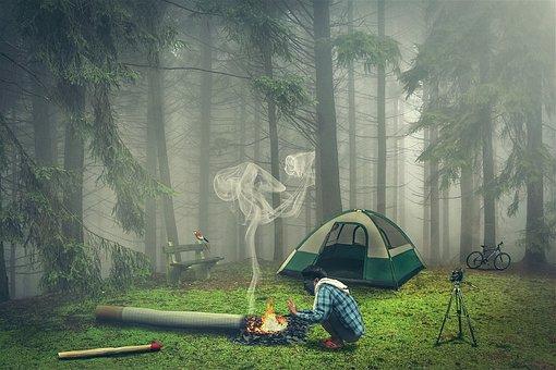 Pa, Nature, Fog, Smoke, Winter Weather, Cool, Smoking