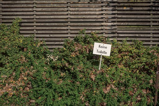 Fence, Hedge, Neighbor, Wc, Loo, Toilet, Goal, Garden