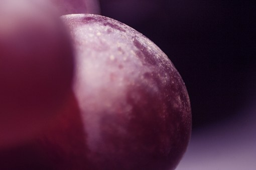 Macro, Bunch Of Grapes, Violet, Health, Grapes, Fruit