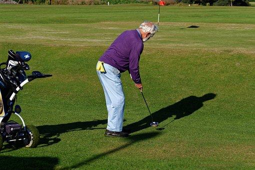 Golfer, Putting, Green, Man, Golf Clubs, Putter, Golf