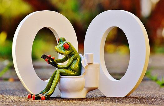 Wc, 00, Toilet, Funny, Frog, Session, Mobile Phone, Loo
