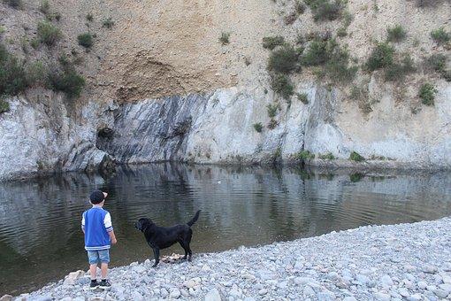 Child, Dog, Play, Animals, Family Life, Small, Boy