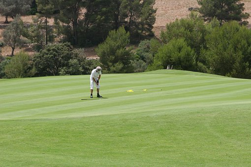Golf, Golfer, Putting, Putt, Sport, Golfing, Leisure
