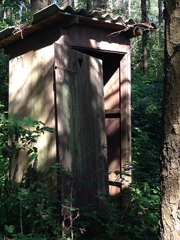 Toilet, Forest, Wc, Toilet Cabin, Nature, Loo