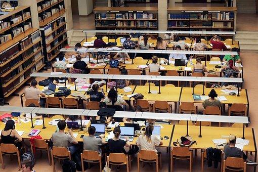 Library, Study, University, Books, I Am A Student