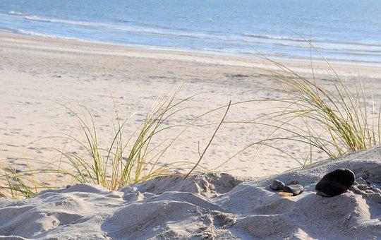 North Sea, Dune, Grass, Beach, Sea, Coast, Sand, Nature