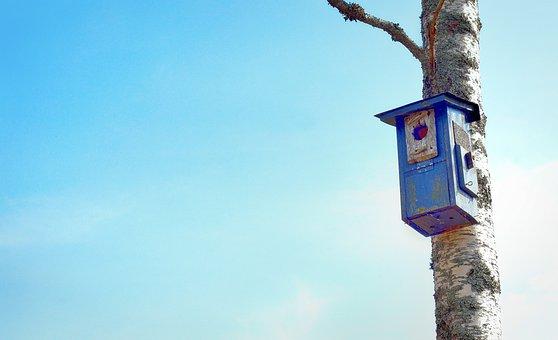 Birdcage, Bird's Nest, Tiny House