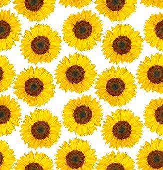 Sunflower, Summer, Yellow Flowers, Countless, Seamless