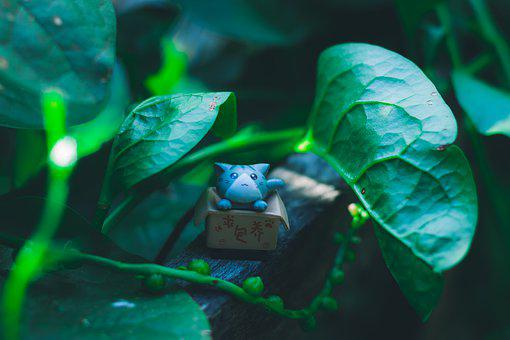 Cat, Green, Pet, Animal, Nature, Cute, Leaves, Garden