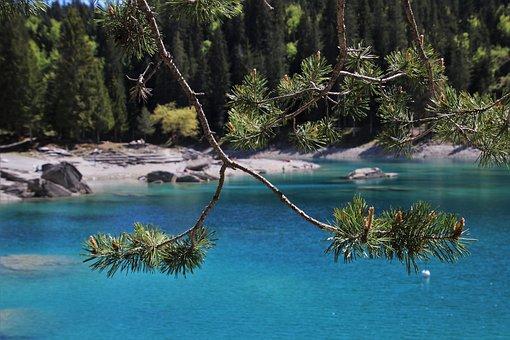 Blue, Alpine Lake, Water, Conifers, Caumasee, Sprig