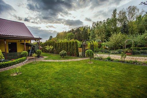 The Plot, Garden, Green, Spring, Nature, Grass, Lawn